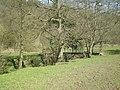 Footbridge over the River Churnet - geograph.org.uk - 1226677.jpg