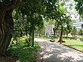 Footpath in Tunduru Gardens in Maputo.jpg