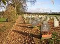 Footpath through St Mary's churchyard, Long Preston - geograph.org.uk - 618659.jpg