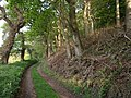 Footpath to Eastcott Beacon - geograph.org.uk - 430033.jpg
