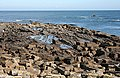 Foreshore at Fife Ness - geograph.org.uk - 937526.jpg