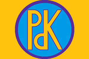 Kurdistan Democratic Party - Former flag of KDP