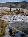 Frozen pool, summit ridge Steel Fell - geograph.org.uk - 1609373.jpg