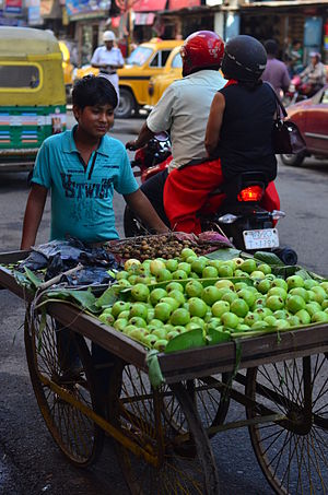 Labour in India - A majority of labour in India is employed by unorganised sector (unincorporated). These include family owned shops and street vendors. Above is a self-employed child labourer in the unorganised retail sector of India.