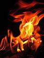 Fuegos (14953988527).jpg