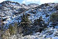 GERÊS NATIONAL PARK PORTUGAL SNOW.jpg