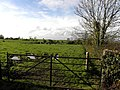 Gallanagh Townland - geograph.org.uk - 1556743.jpg