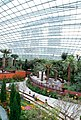 Gardens by the Bay flower dome - panoramio.jpg