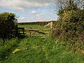Gate by the lane - geograph.org.uk - 1290835.jpg