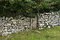 Gate stile near West Coppice - geograph.org.uk - 1451850.jpg