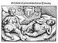 Geburtsfehler Tettnang 1516.jpg