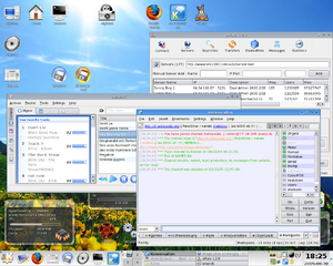 KDE 3.4.2 running on Gentoo Linux (2.6.13-r9)....