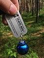 Geocaching Travelbug-Tag cc by Denis Apel.jpg