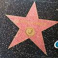 George Kennedy's Star.JPG