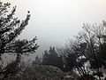 Gfp-wisconsin-devils-lake-state-park-foggy-bluff.jpg
