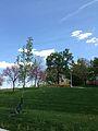 Giffen Hill.jpg