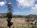 Gilan Province, Iran - panoramio (7).jpg