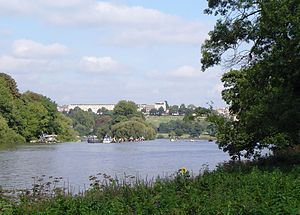 Glover's Island - Glover's Island from upstream with Richmond Hill beyond