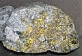 Gold and quartz (Holy Terror Mine, Keystone, Black Hills, South Dakota, USA) 4 (16600022293).jpg