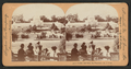Golden Gate Park, San Francisco, from Robert N. Dennis collection of stereoscopic views.png
