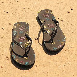 Gone Barefootin' free creative commons (4615287172) (cropped).jpg