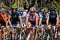Grand Prix Cycliste de Montréal 2011 (2).jpg