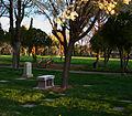 Graveyard Bench (3376211105).jpg