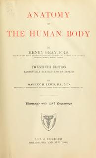 <i>Grays Anatomy</i> textbook of human anatomy