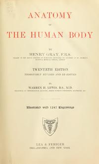 Gray's Anatomy cover