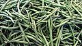Green beans 169clue.jpg