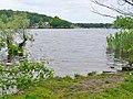Grunewald - Havelufer (Havel Riverbank) - geo.hlipp.de - 37225.jpg