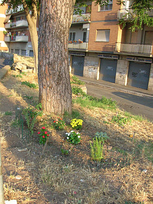 English: Guerrilla gardening in Pigneto (Rome)...