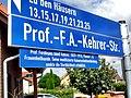 Guntersblum- Prof.-F.A.-Kehrer-Straße- Straßenschild 12.9.2009.JPG