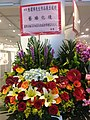 HKCL 銅鑼灣 CWB 香港中央圖書館 Hong Kong Central Library 展覽廳 Exhibition Gallery flowers March 2016 SSG 02.jpg