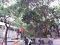 HK 灣仔 Wan Chai 皇后大道東 Queen's Road East Road 永樂里 Wing Lok Lane Saturday February 2019 SSG 02.jpg