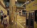 HK Intl Aiport 香港國際機場 bus stop night July-2013 HKIA KMBus E32 E42 N30 N31 N42 N42A stop signs CityBus E11 E21 E22 E22A E22P E22X E23 stop signs.JPG