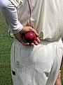 Hand with cricket ball, Bishop's Stortford Cricket Club, Hertfordshire 2.jpg