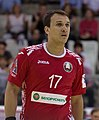 Handball-WM-Qualifikation AUT-BLR 050.jpg