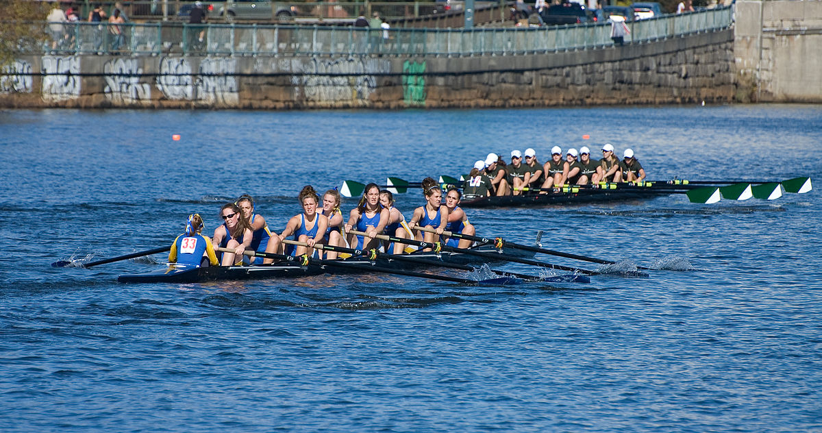 Rowing Instructor | Profiles, Jobs, Skills, Articles ...