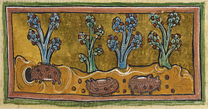 Rochester Bestiary - Detail of a miniature of hedgehogs rolling on grapes, sticking them to their spines to carry back to their young; folio 45r.