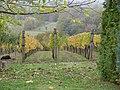 Hegymagas, 8265 Hungary - panoramio (24).jpg