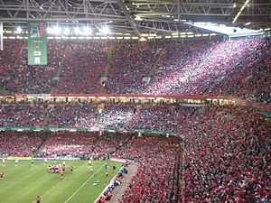 Munster Rugby - Inside the Millennium Stadium for the 2006 final where over 65,000 Munster fans were present
