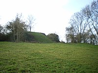Hen Domen castle mound - geograph.org.uk - 1088002.jpg