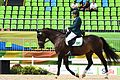 Hipismo campeonato individual misto grau Ia na Paralimpíada Rio 2016 (29702493915).jpg