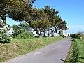 Holiday camp, Wyke Regis - geograph.org.uk - 855477.jpg