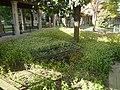 Hopital Sainte Anne autre vue 6.jpg