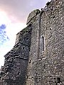Hore Abbey, Caiseal, Éire - 45861521294.jpg