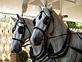 Horse drawn hearse horses City of London Cemetery 2.jpg