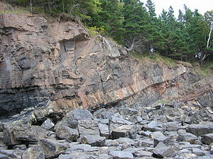 Sill (geology) - Mid-Carboniferous dolerite sill cutting Lower Carboniferous shales and sandstones, Horton Bluff, Minas Basin South Shore, Nova Scotia