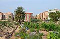 Horts urbans de Benimaclet.JPG